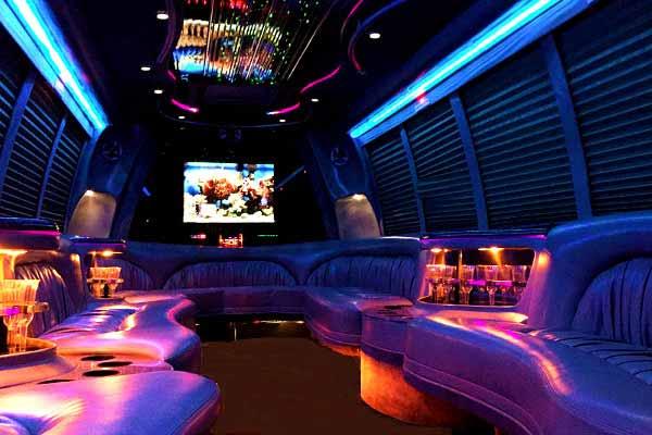 18 Passenger Party Bus Rental Las Vegas